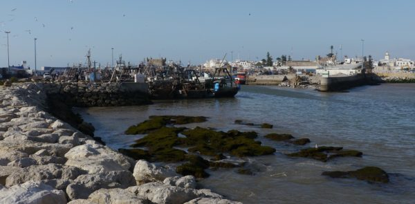 Hafen Essaouira