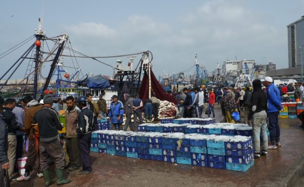 Fischerhafen Safi